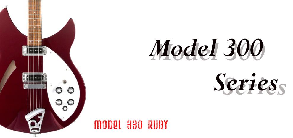 Model 300 series